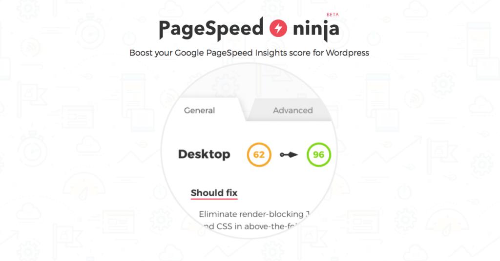 PageSpeed Ninja