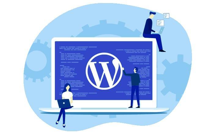 Dịch vụ tối ưu WordPress tại WSU nhanh chóng, tin cậy