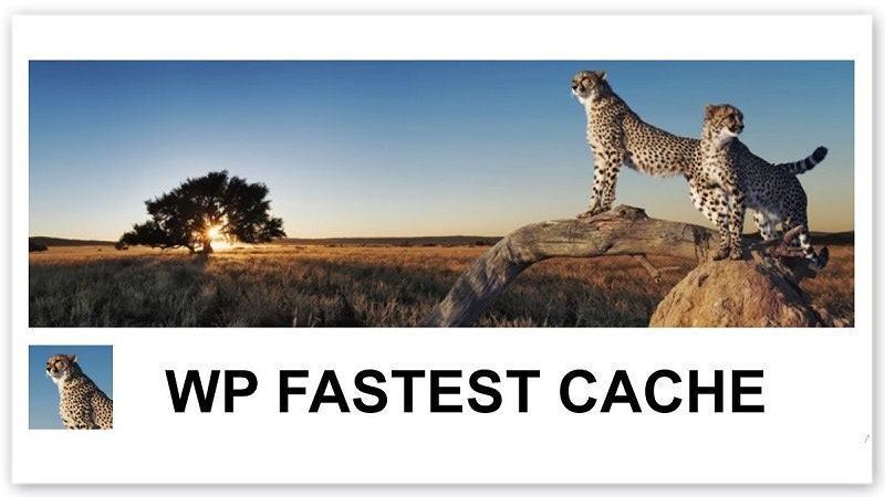 WP Fastest Cache dễ sử dụng để tăng tốc website
