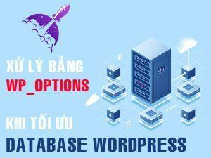 xử lý bảng wp_options khi tối ưu database wordpress