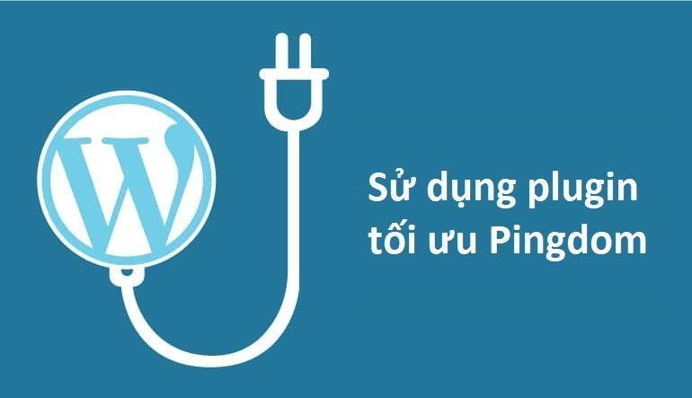 Sử dụng plugin để tối ưu Pingdom cho website