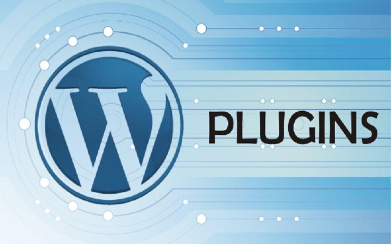 WordPress có nhiều plugin hỗ trợ